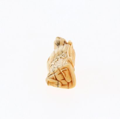 *JAPON, XVIIIe siècle Netsuke en ivoire* représentant un gamma Sennin debout. Non...