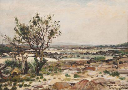 Paul-Émile BÉCAT (1885-1960)  Rapides du...
