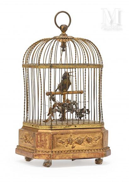 Cage automate à oiseau chanteur. Cage rectangulaire...