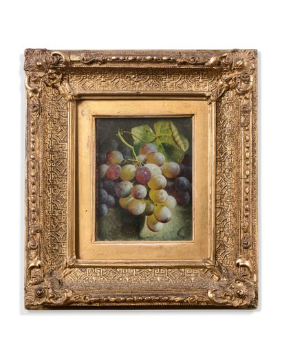 Charles STUART (1854 - 1904)  Grappe de raisin...