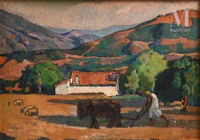 Augustin FERRANDO (Miliana 1880-1957)