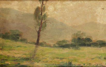 Dieudonné JACOBS (Montgennee les Lièges 1887- ?)