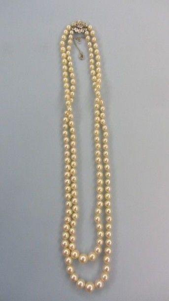 Double rangs de perles de culture disposées...