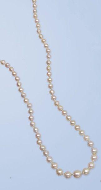 Collier de 89 perles fines, disposées en...