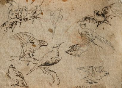 Attribué à Jan I Van KESSEL (Anvers 1627 – 1679)