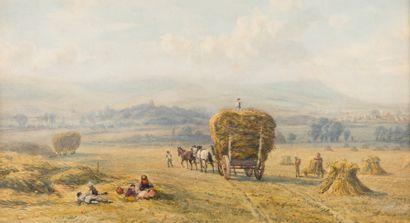 David COX fils (1809 - 1885)