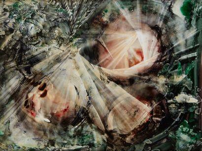 Lucienne BERTHON  Les fleurs de la conception,...
