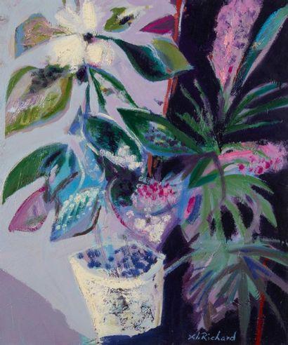 Alain RICHARD (Né en 1933)  Les plantes  Huile...