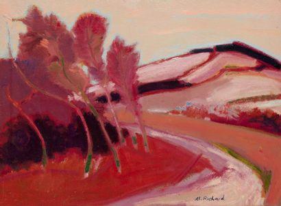 Alain RICHARD (Né en 1933)  La route de la...
