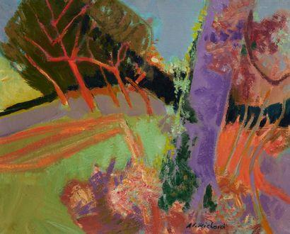 Alain RICHARD (Né en 1933)  La lumière sur...