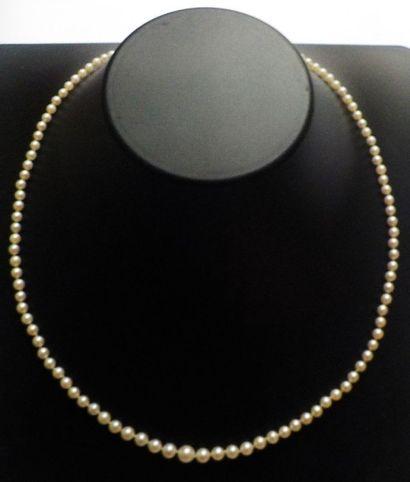 Collier de perles en chute, avec petit fermoir...