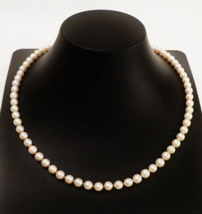 Collier de 71 perles shoker, le fermoir en...