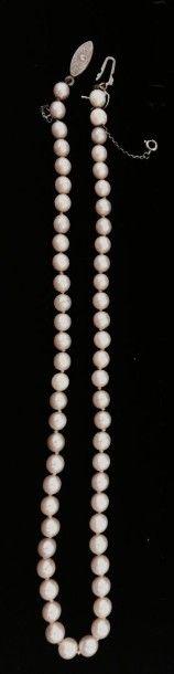 Collier de perles choker