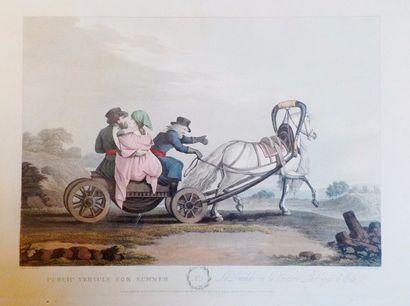 D'après MORNAY (XIXème siècle)  Suite de...