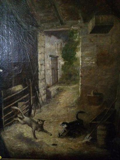 Ecole Française du XIXème siècle  Les chats...