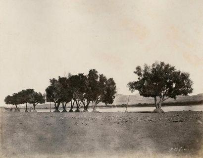 John Beasley GREENE (1832-1856)  Le Nil,...