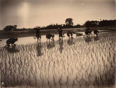 Annam, Tonkin  Hanoï, Saigon, Mai-Xa, My-Tho,...