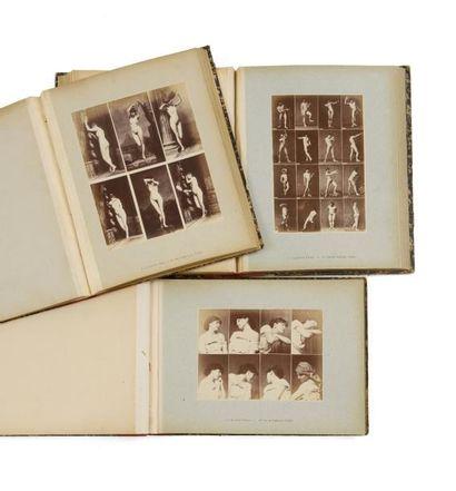 A. CALAVAS (éditeur)  3 albums d'études :...