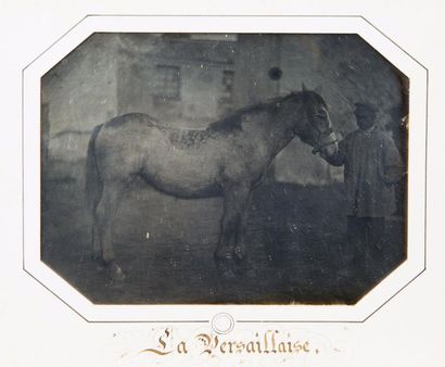 Louis-Auguste BISSON (1814-1876)