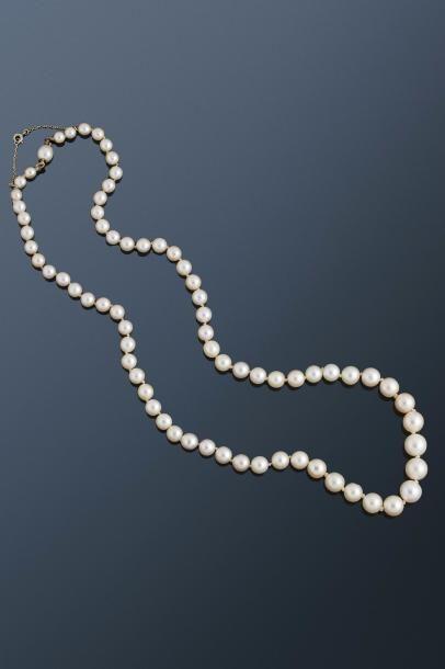 Collier de 71 perles fines et de culture...