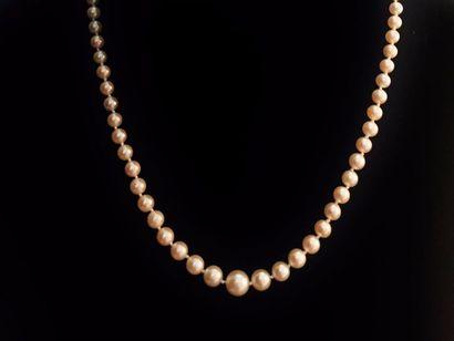 Collier de perles en chute, le fermoir en...