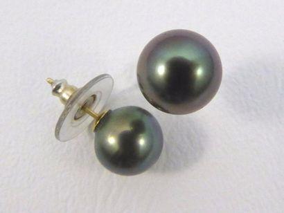 Paire de clous d'oreilles ornés d'une perle...