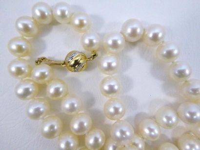 Collier de 48 perles d'eau douce semi-rondes...