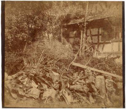 V. DIJON  Tas de bois, 1854  Tirage albuminé...