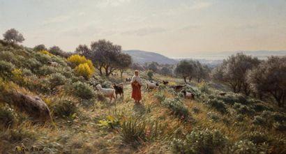 Antoine GADAN (1854 -1934)  Bergère à Siraïdi, sur les hauteurs de Bône (Annaba),...