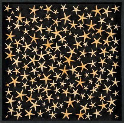 """""""STARS"""", composition d'étoiles de mer sur fond velours noir en coffret vitré """"STARS"""",..."""