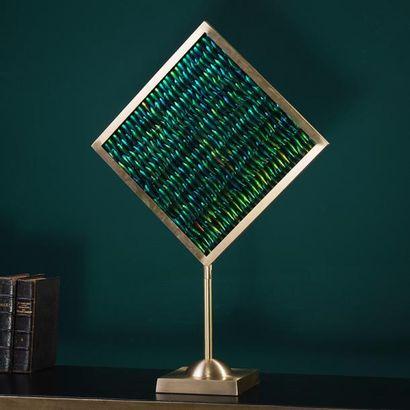 Elytres de sternocera dans un cadre de laiton carré