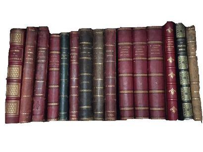 Lot de livres :  -le Journal du Jeudi...