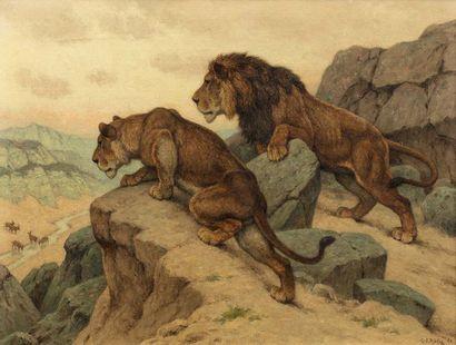 Georges Frédéric ROTIG (Le Havre 1873 - Paris 1961)  Lion et lionne à l'affût  Huile...
