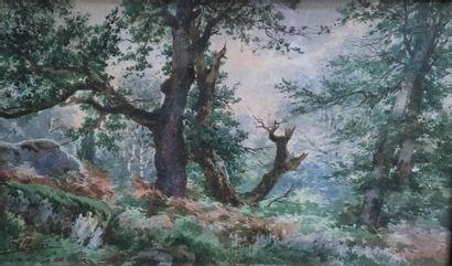 Auguste ALLONGÉ (1833-1898)  Paysage de forêt...