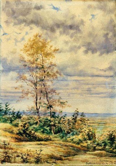 Jed Wilson (XIX- XXème)  Paysage de campagne...