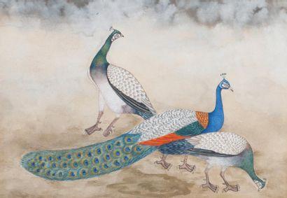 Inde ou Iran, 20e siècle  Miniature peinte...