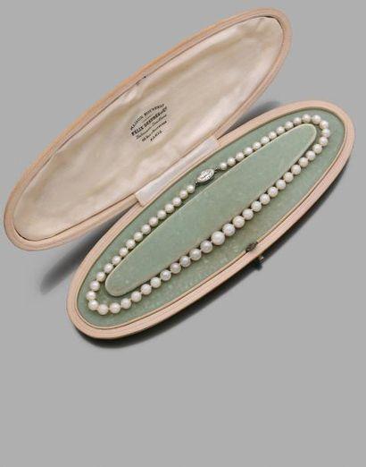 Collier de 53 perles fines ( et d'une perle de culture) en chute le fermoir en platine...