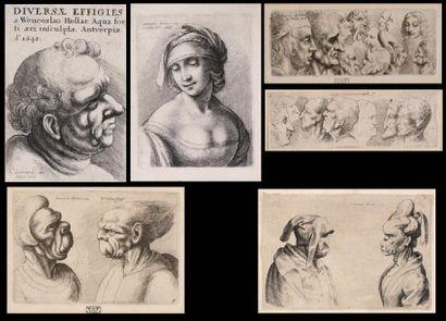 Wenceslas HOLLAR (1607 – 1677)  Etudes de...