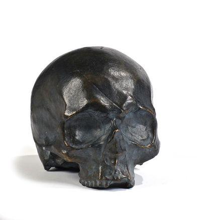 Ecole FRANCAISE du XXème siècle  Crâne du...