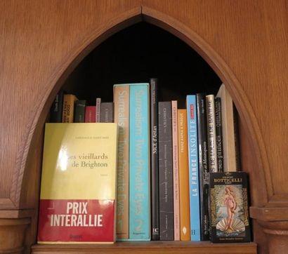 Environ 19 volumes brochés et cartonnés modernes (histoire, surréalisme, catalogue...