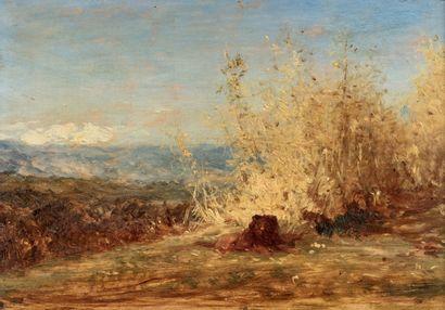 Félix ZIEM (Beaune 1821 - Paris 1911) Lion...