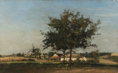 Eugène LAVIELLE (Paris 1820 - 1889) Arbre...