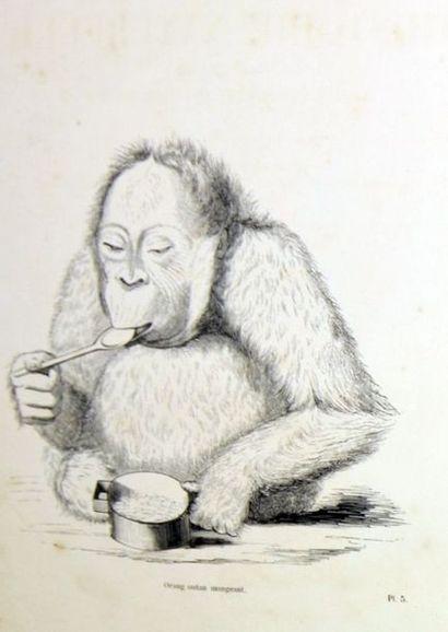 CHENU (Docteur J.C.). Encyclopédie d'histoire...