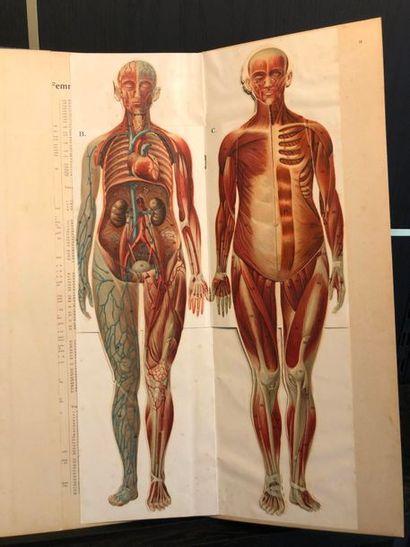 DESCHAMPS (Léon). Mémento anatomique instantané....