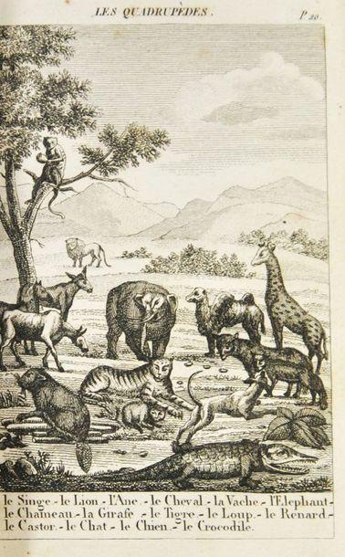 [DUFRENOY (Madame)]. Cabinet du petit naturaliste....