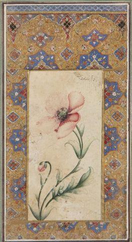 Fleur de pavot Attribution tardive à Muhammad...
