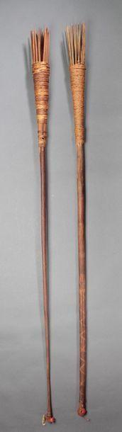 Ensemble de deux harpons utilisés pour la...