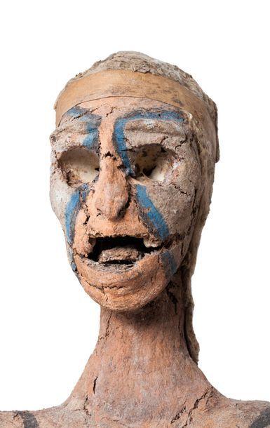 Exceptionnel rambaram présentant un ancêtre...