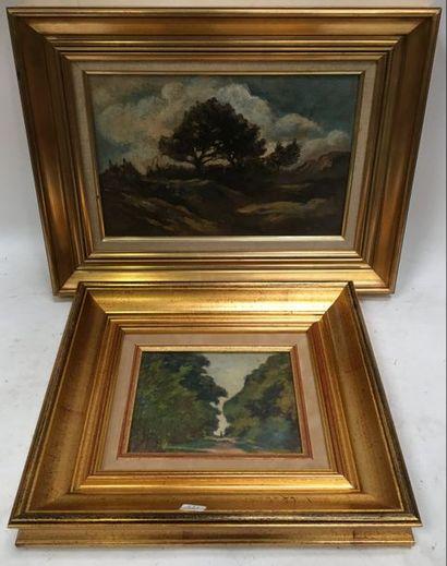 Huile sur toile et huile sur carton  2 vues...