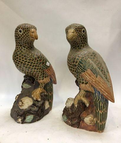 Deux perroquets en plâtre vernissé  H. 45,5...